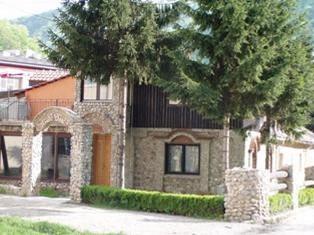 Vila Nenad Ovčar banja