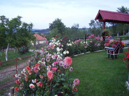 Pogled-na-Zlatibor