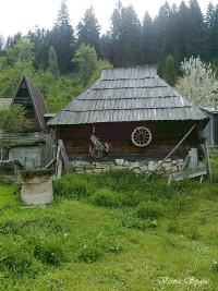 Gvozd, Domaćinstvo Joksimovic
